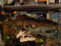 Cretaceos17