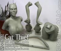 Catthief