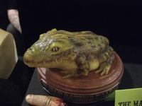 Maskmonstfrog21